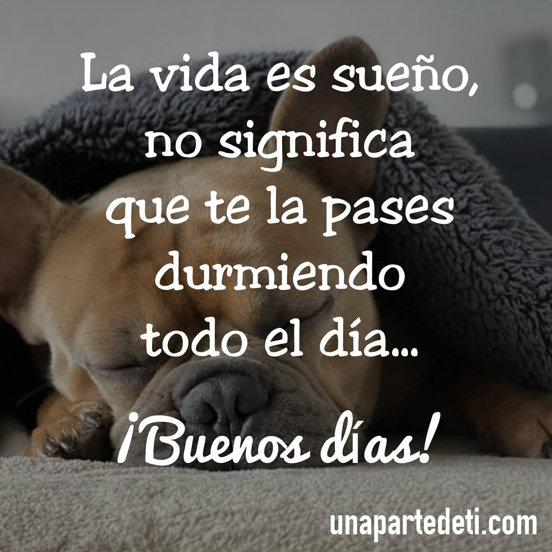 La vida es sueño, no significa que te la pases durmiendo todo el día... ¡Buenos días!