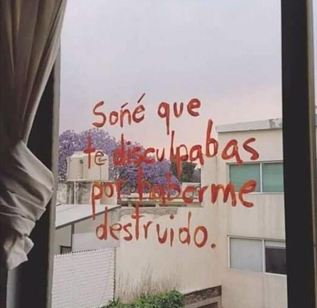 Soñé que te disculpabas