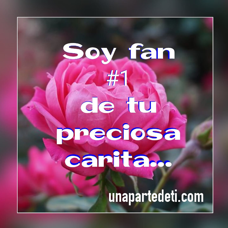 Soy fan #1 de tu preciosa carita...